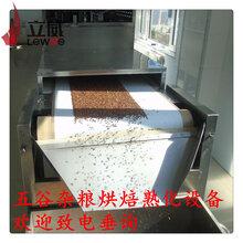 河南五谷杂粮烘焙熟化设备