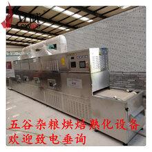黄豆微波低温烘焙熟化设备厂家
