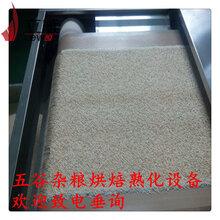 五谷杂粮熟化设备厂家微波烘焙机