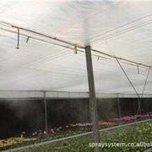 養殖場噴霧降溫除臭專業技術圖片