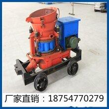 PZ-5B矿用轨轮喷浆机厂家直销建筑喷浆机低价销售喷浆机配件图片