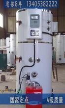 惠農lss型燃氣熱水鍋爐銷售廠家圖片