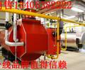 邢台6吨8吨10吨环保锅炉