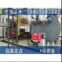 益阳市销售燃气锅炉图片