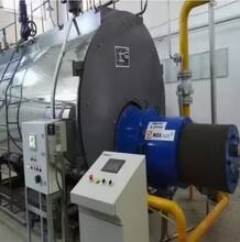 达州市燃气锅炉厂家图片