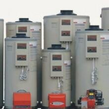 湖北省燃油蒸汽锅炉制造图片