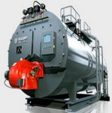 佳木斯市热水锅炉厂家30排放图片