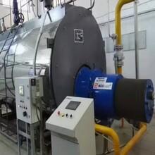 雙鴨山市蒸汽鍋爐生產30排放圖片