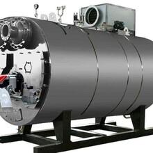 舟山市燃氣鍋爐銷售商免檢蒸汽爐圖片