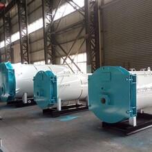 熱搜品牌安慶市燃氣鍋爐制造廠家圖片
