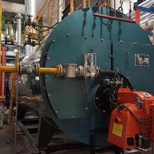 池州市生物质颗粒锅炉规格型号免检蒸汽炉图片