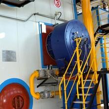 成都市模块低氮锅炉销售商免检蒸汽炉图片