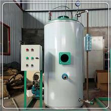 金湖100公斤200公斤300公斤蒸汽发生器生产单位图片