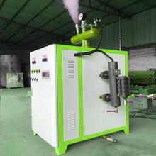 涿州0.5吨0.7吨1吨生物质锅炉生产单位图片