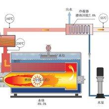 辽阳环保燃煤锅炉生产厂家图片