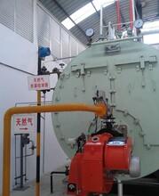 河北保定燃气蒸汽锅炉生产厂家图片