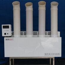 爱恩爱尔节能型食用菌专用工业加湿器/超声波工业设备/F-J20/制雾量20公斤