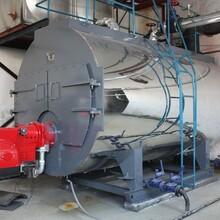 防城港市各种吨位燃气锅炉图片