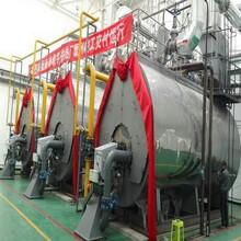 湛江市10吨15吨20吨燃气锅炉图片