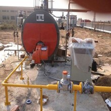 南和縣燃氣鍋爐制造圖片