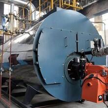 湖北武漢燃油鍋爐生產廠家圖片
