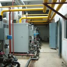 新疆吐魯番0.5噸生物質蒸汽鍋爐廠家直銷電話圖片