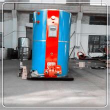 呼倫貝爾小型生物質取暖鍋爐廠家聯系電話圖片