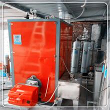 長沙0.3噸蒸汽鍋爐安裝調試圖片