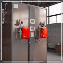 石家莊晉州0.5噸0.7噸1噸蒸汽發生器廠家直銷電話圖片