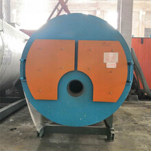 滄州肅寧燃油蒸汽發生器廠家圖片