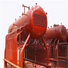 保定燃氣鍋爐制造廠家報價圖片