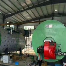 保定定興500公斤700公斤蒸汽發生器制造廠圖片