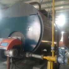 連云港市燃氣蒸汽鍋爐具體報價圖片
