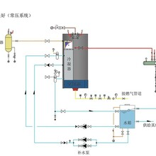 煙臺萊州生物質蒸汽發生器制造廠家圖片
