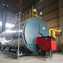 揭陽市6噸蒸汽鍋爐具體多少錢圖片