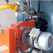 麗江市臥式蒸汽鍋爐制造-安裝-售后圖片