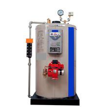 麗水燃油蒸汽鍋爐生產廠家圖片