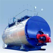 德州燃氣蒸汽鍋爐制造廠家圖片