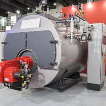 滄州20t燃煤蒸汽鍋爐廠家直銷價格低圖片
