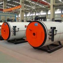 山東青島20噸燃氣蒸汽鍋爐廠家報價圖片