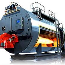 山東德州0.7噸蒸汽發生器廠家報價圖片