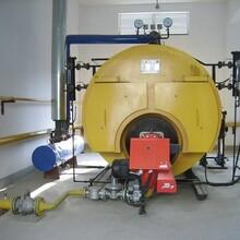 吉林白山15噸蒸汽鍋爐制造商報價圖片