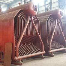陜西榆林3噸燃氣蒸汽鍋爐制造廠家圖片