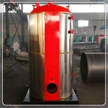 揚州小型燃氣鍋爐生產廠家圖片
