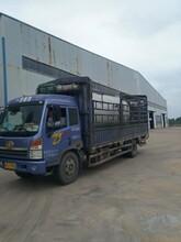 安徽黃山低氮燃氣鍋爐(股份有限公司)圖片