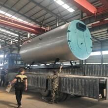 白城20噸燃氣鍋爐廠家直銷價格圖片