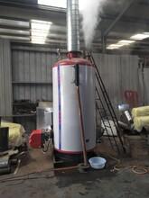 興安盟生物質導熱油鍋爐制造商圖片