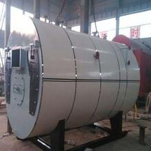 昌吉12吨燃气蒸汽锅炉-燃煤生物质锅炉厂图片