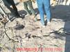 浙江拆除石塊液壓劈裂機使用效果