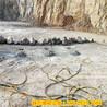 分裂坚硬岩石必威电竞在线陕西渭南